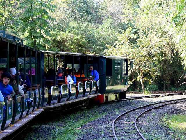 Trem ecológico Cataratas do Iguaçu (Foto: Jorge Gobbi)
