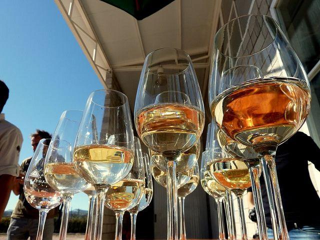 Mendoza, vinhos (Foto: Jorge Gobbi)
