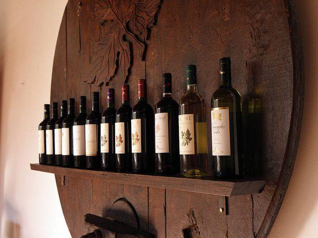 Os melhores vinhos argentinos (Foto: Hanumann)
