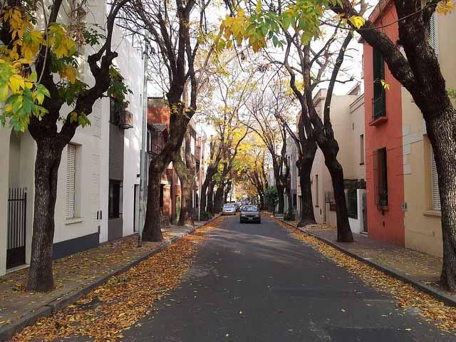 Outono em Buenos Aires (Foto: Jorge Gobbi)