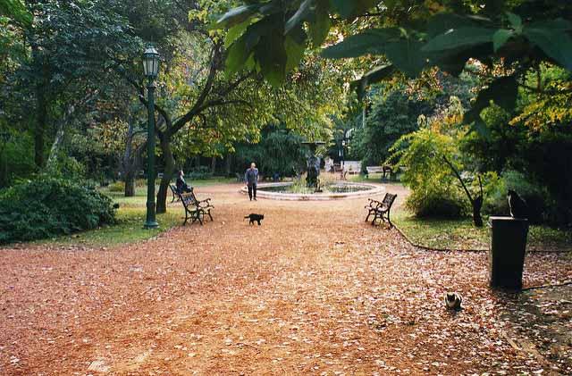 Outono em Buenos Aires (Foto: Leonora Enking)