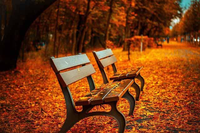 O outono em Buenos Aires