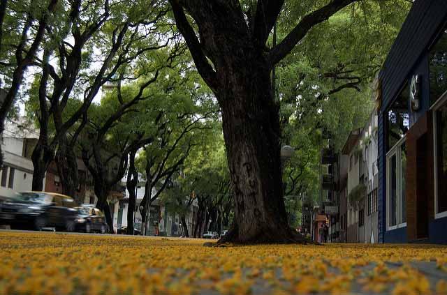 Como não passar perrengue em Buenos Aires, clima (Foto: blmurch)